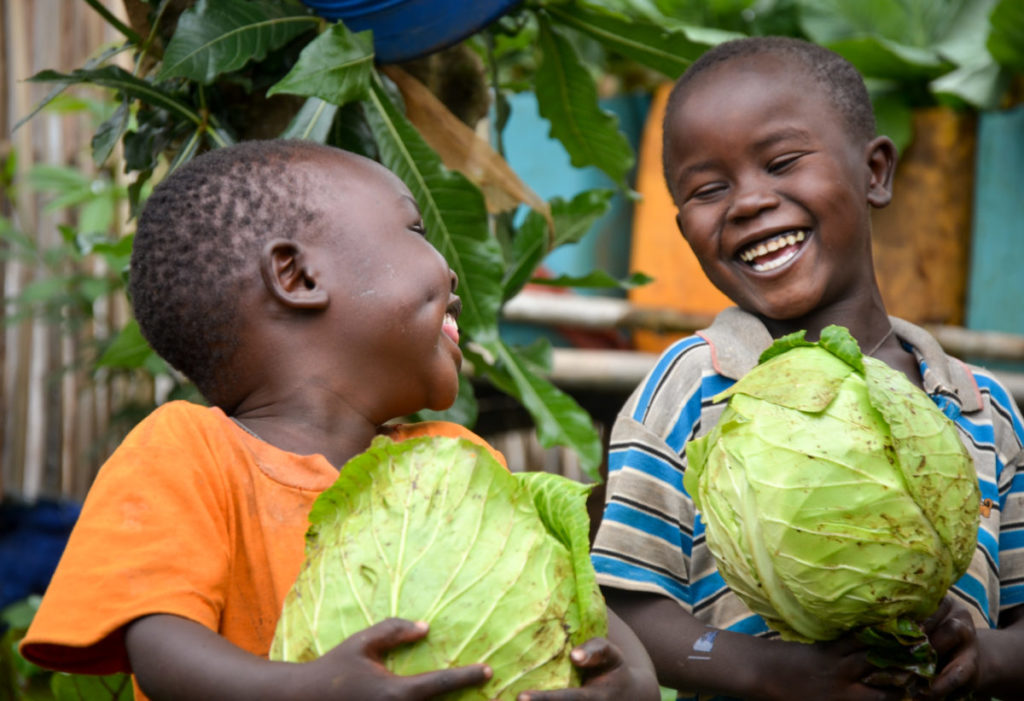 Farming for Food Security