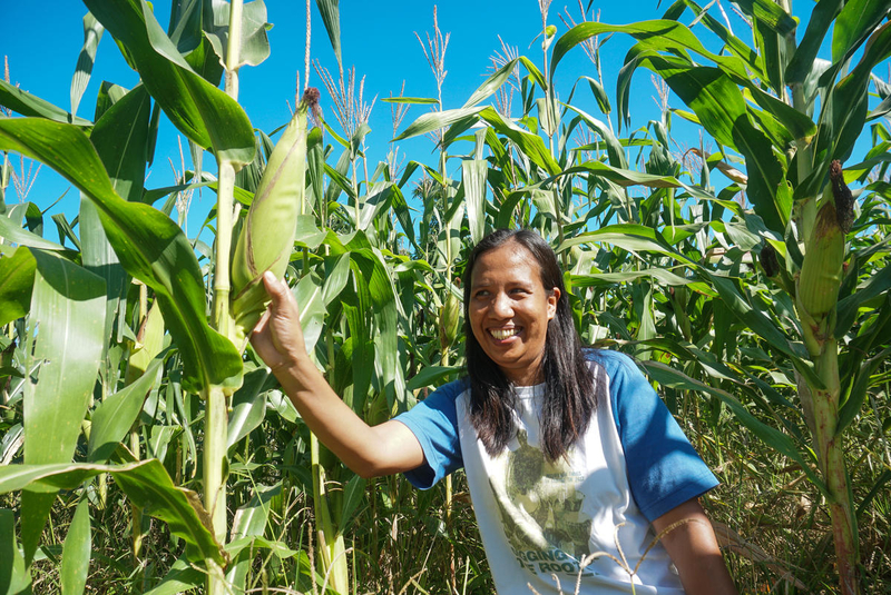 36-year old Kleng is excited to harvest from her family's corn field in the Phillippines. Photo credit: ©2019 World Vision, Florence Joy Maluyo