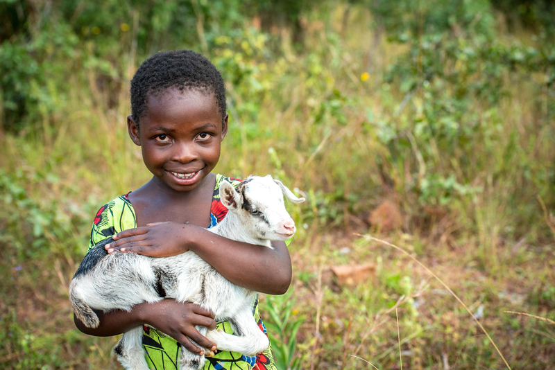 Child holding a goat.