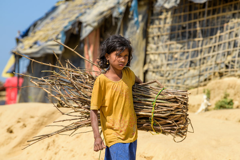 Rohingya refugee girl carries wood from outside the camp