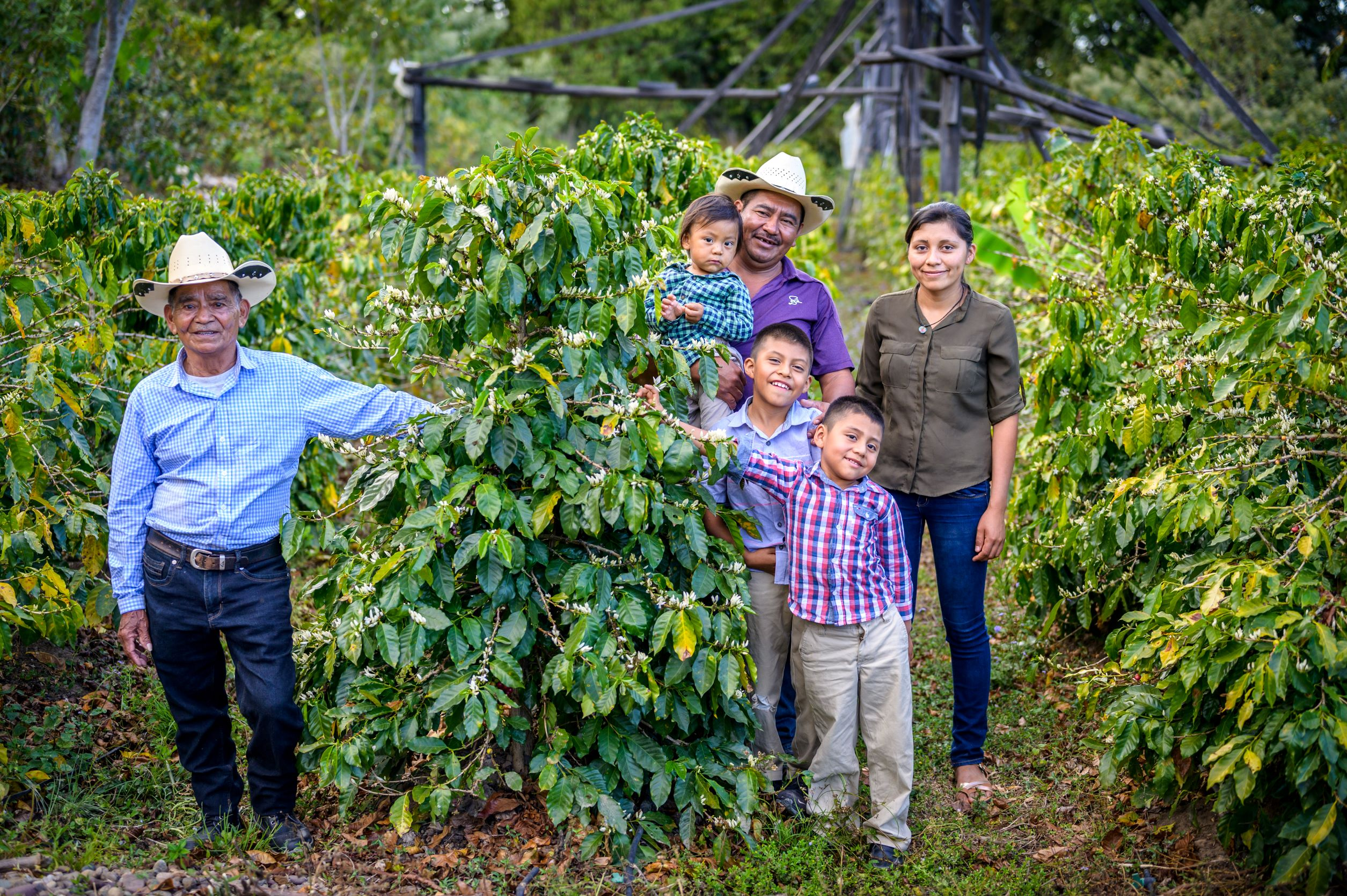 The Need for Resilient Development in Central America